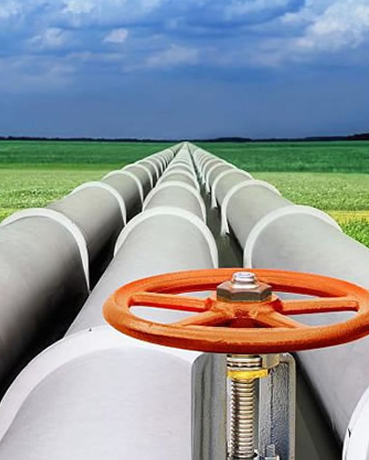 The East African Crude Oil Pipeline (EACOP) Project